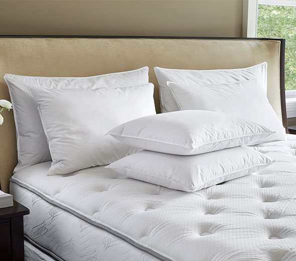 Buy Luxury Hotel Bedding From Jw Marriott Hotels Feather