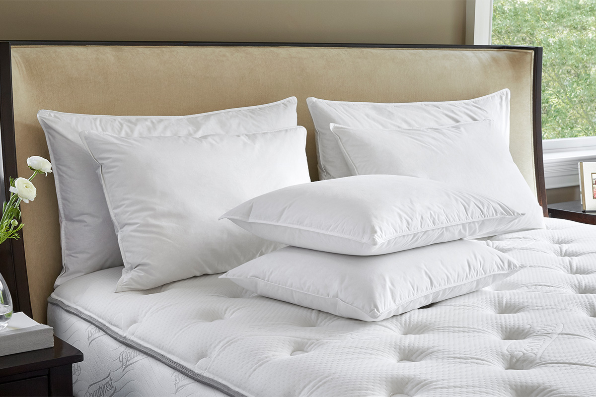 cases of pillowcase quality does colored pillow cheap pillows size hotel marriott covers large use brand what